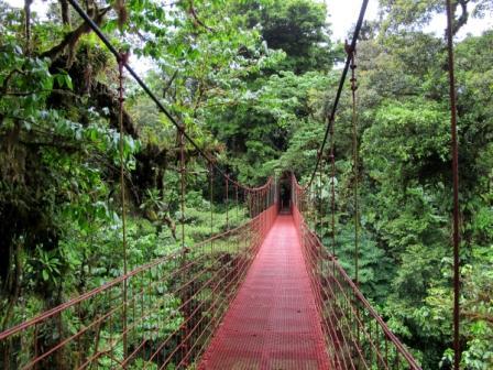 Monteverde Cloud forests